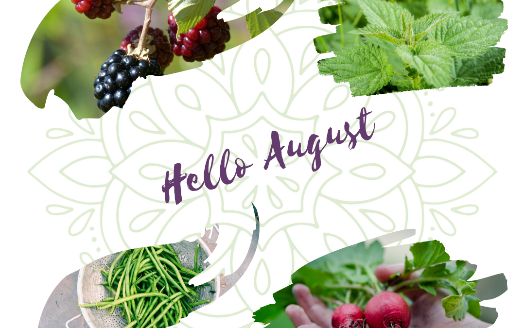 Welcome August – Vegan Quiche Recipe